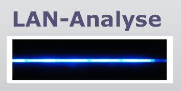 Synapse Networks Analyse Prospekt